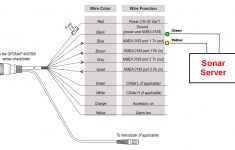 Fantastic Usb Wiring Diagram Micro Camera Brown Green Red Sv D D Usb Wiring Digital Resources Bemuashebarightsorg