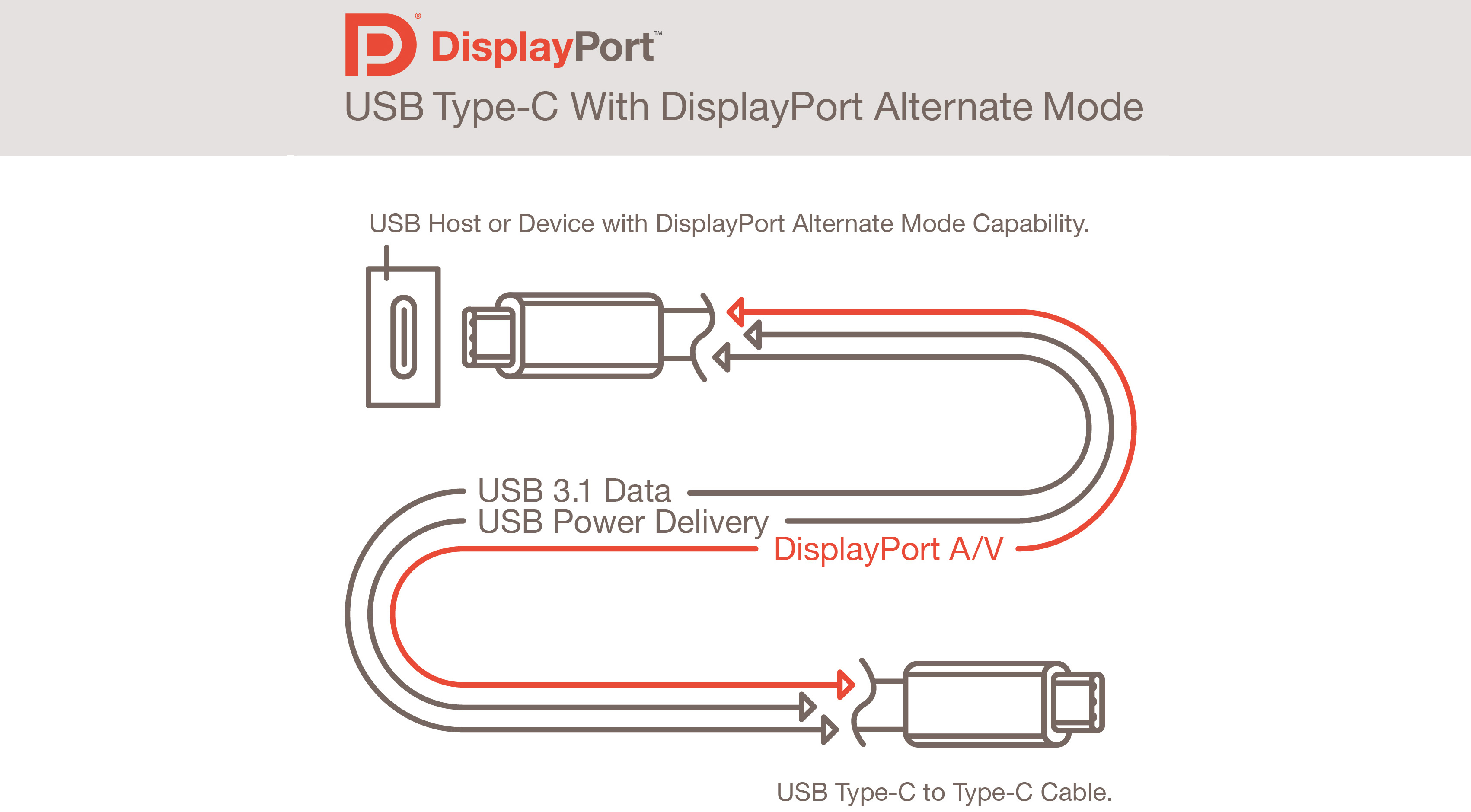 Usb Type-C Connector Will Also Support Displayport: Finally, One - Micro Usb Cable Wiring Diagram Active Power